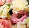 Fête des mères fleur