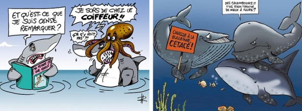 Humour blague poisson