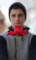 Messages pour offrir des roses