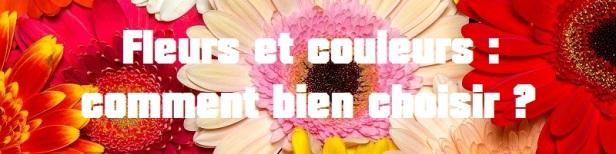 Fleurs couleurs choisir